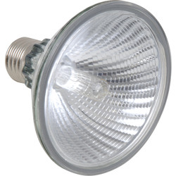 Sylvania Sylvania Halogen Spot Lamp PAR 75W ES PAR30 D - 11680 - from Toolstation
