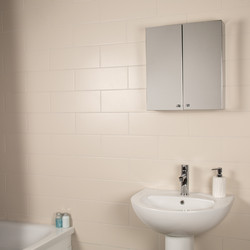 Croydex Double Door Stainless Steel Bathroom Cabinet