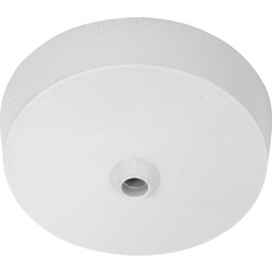 Axiom Axiom Ceiling Rose Terminal & Earth 5A - 38618 - from Toolstation