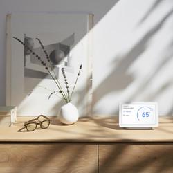 Google Nest Hub - Chalk