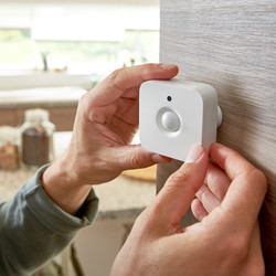 Philips Hue Smart Controls