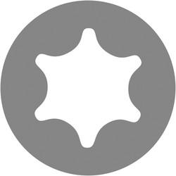ForgeFast Multi Purpose Self Drilling Wood Screw