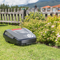 SOLO by AL-KO Robolinho R3100 25.2V 30cm Robotic Lawnmower