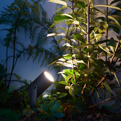 Philips Hue Lily Smart Outdoor Light Base Kit