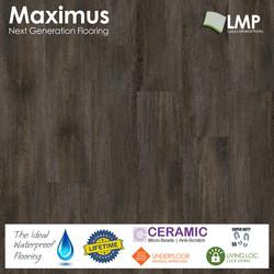 Maximus Provectus Rigid Core Flooring - Arbor