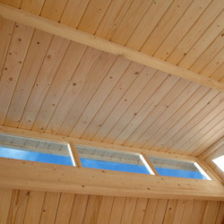 Rowlinson Skylight Shed With Store