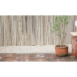 Half Bamboo Screen 4m x 2m - 61232 - from Toolstation