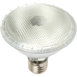 Halogen PAR Reflector Lamp 75W PAR30 ES 600lm - 69939 - from Toolstation