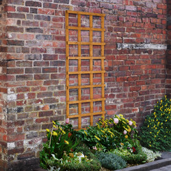 Forest Forest Garden Heavy Duty Trellis 180cm x 60cm - 76480 - from Toolstation
