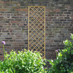 Forest Forest Garden Hidcote Lattice 180cm x 60cm - 81011 - from Toolstation