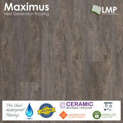 Maximus Provectus Rigid Core Flooring - Dubris
