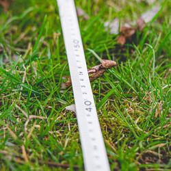 Minotaur Surveyors Tape