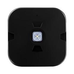 Integral LED IP44 Emergency Surface Mount Downlight