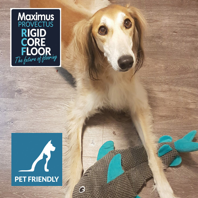Maximus Provectus Rigid Core Flooring (£29.25/sqm) - Columbus Herringbone