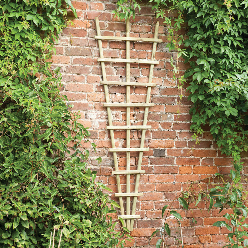 Forest Garden Traditional Fan Trellis
