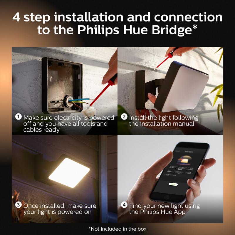 Philips Hue Floodlight