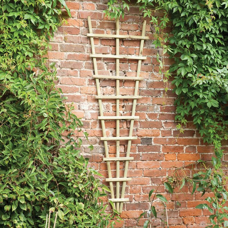 Forest Garden Traditional Fan Trellis