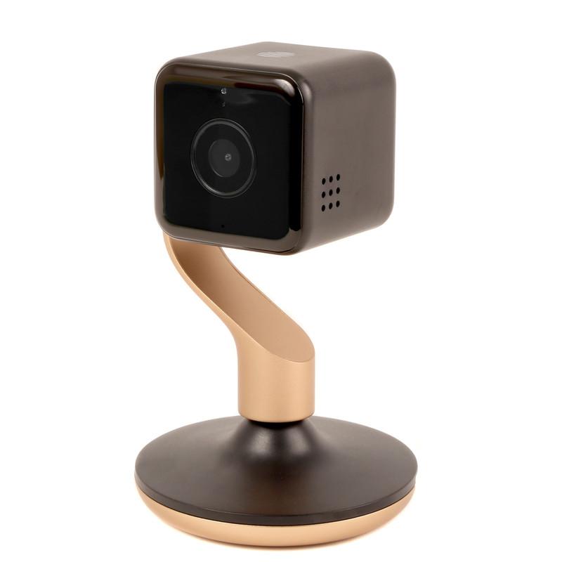 Hive View Camera